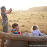 Camping in a Wild Safari - Fun, Thrill and Excitement